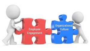 How Important Is The Culture Of A Company?